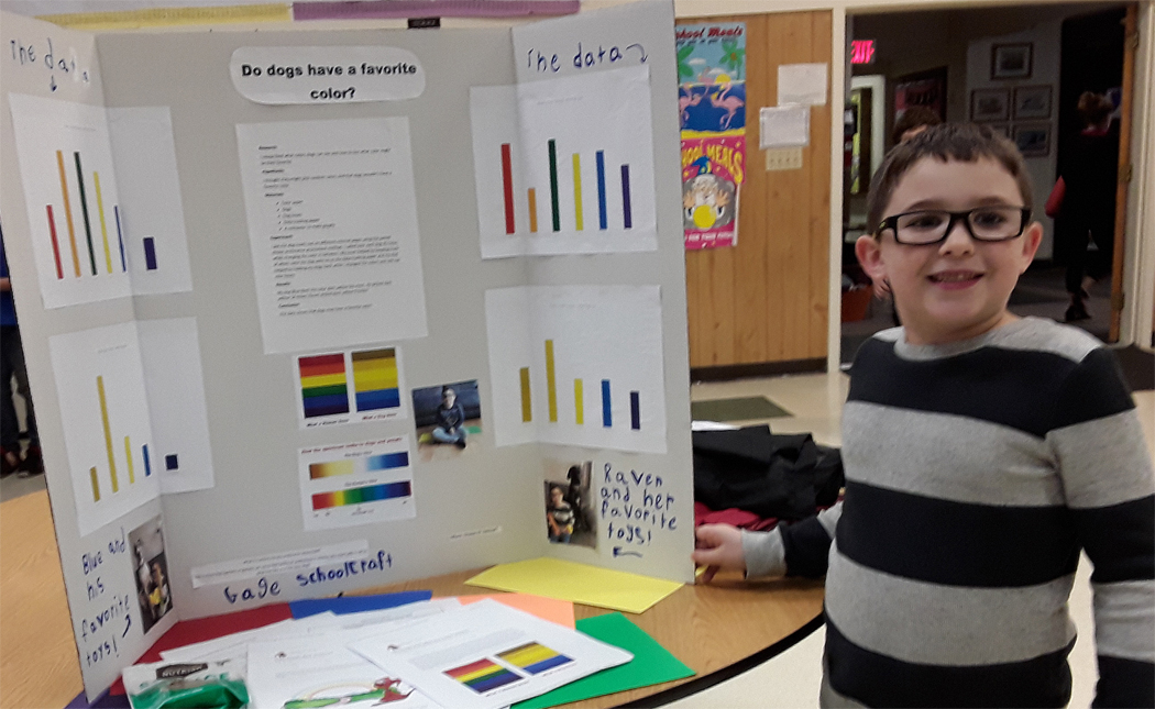 QA Assistant Sponsors SES Science Fair 2019 - Color Preference In Dogs