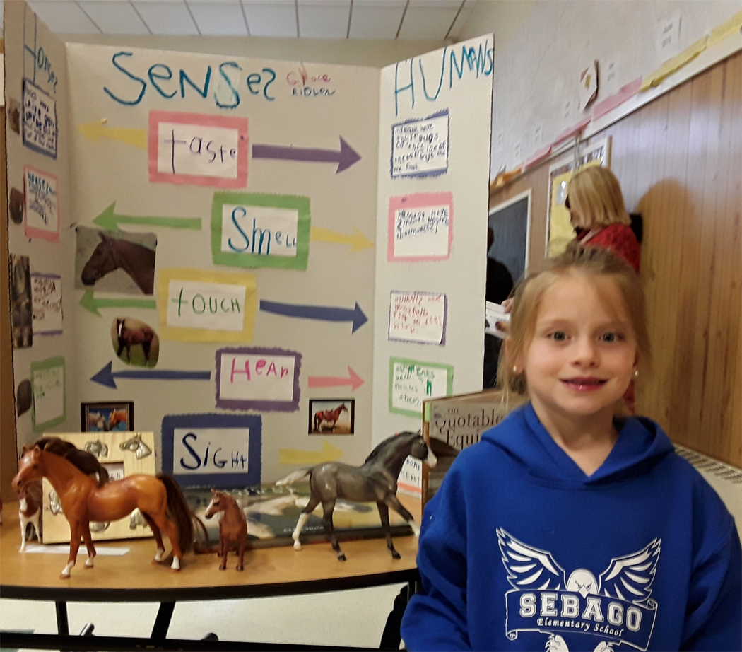 QA Assistant Sponsors SES Science Fair 2019 - Horses and their Senses